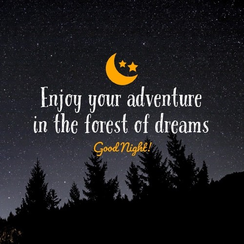 Good Night Quotes for Wife