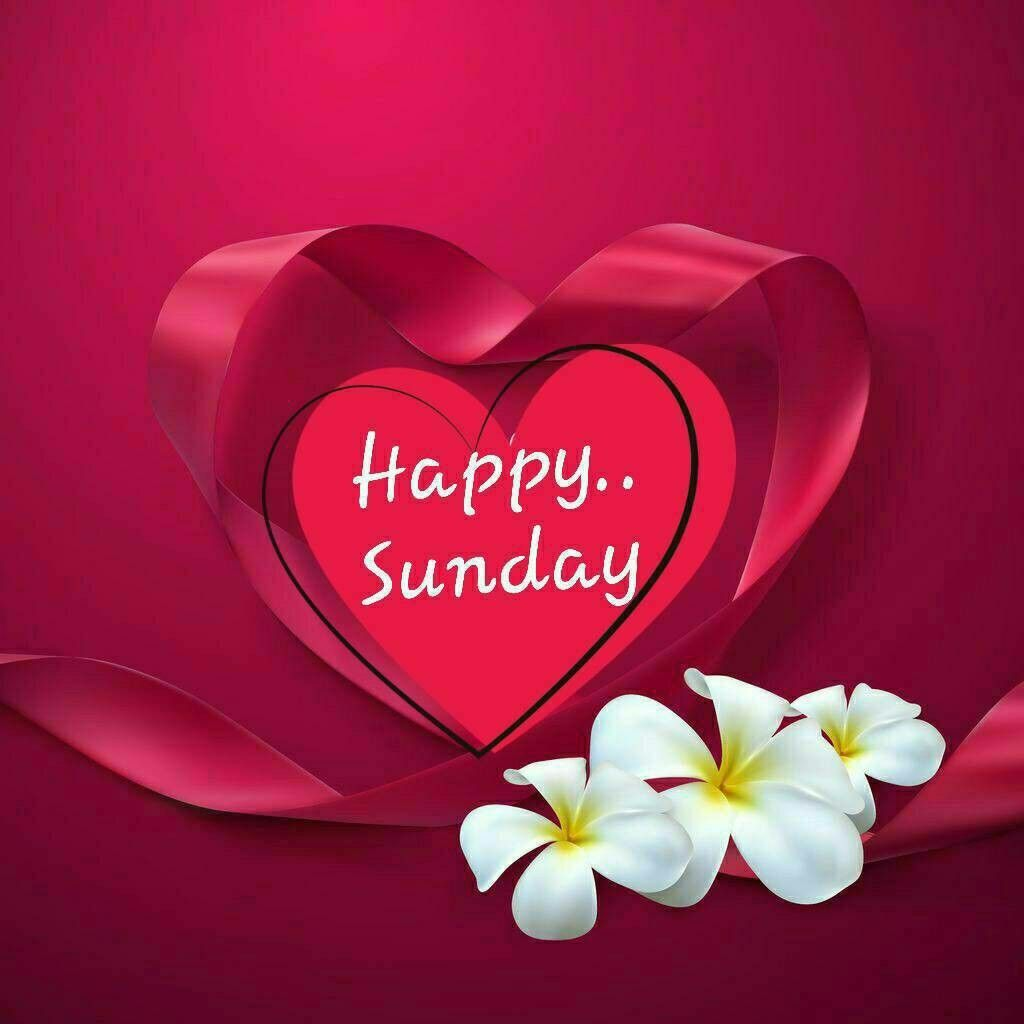 Happy Sunday SMS Wishes, Messages, Greetings & Prayers   Legitpedia